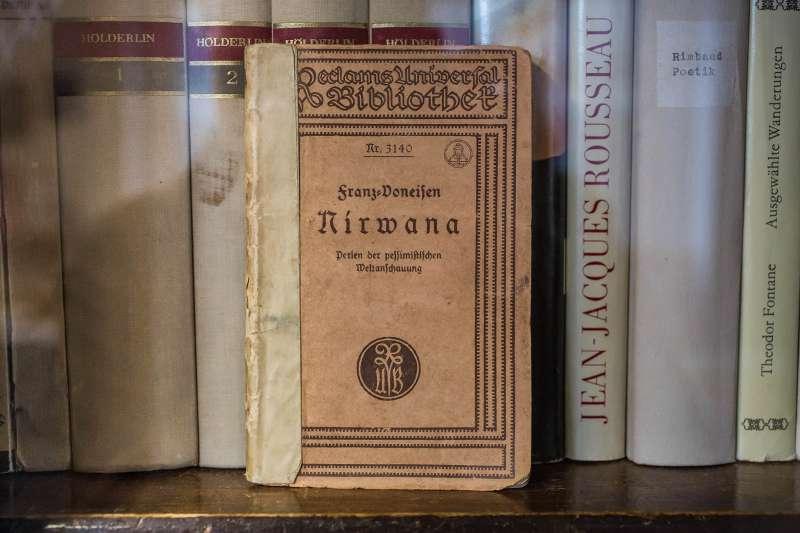 Nirwane - Perlen der pessimistischen Weltanschauung von Franz Doneisen