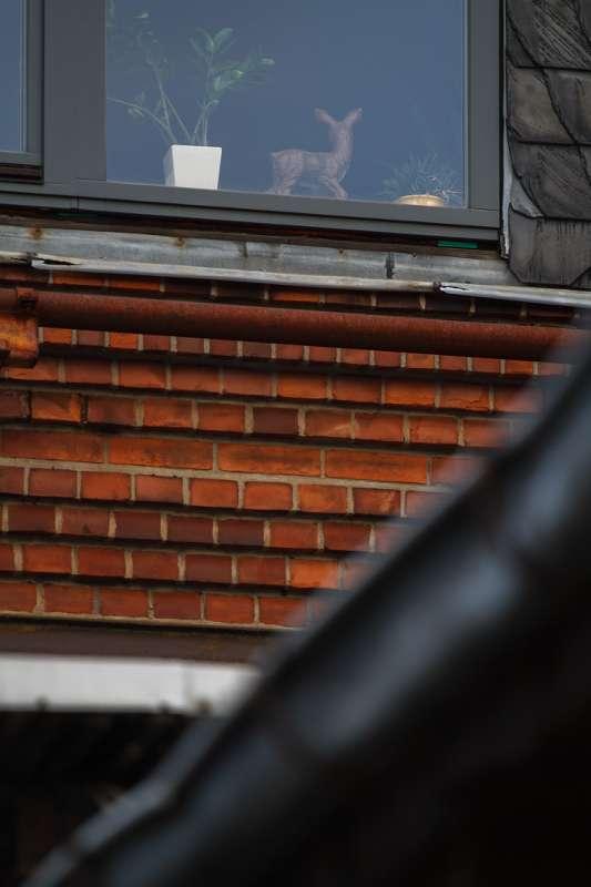 Detailaufnahme eines Fensters im Tapetenwerk.