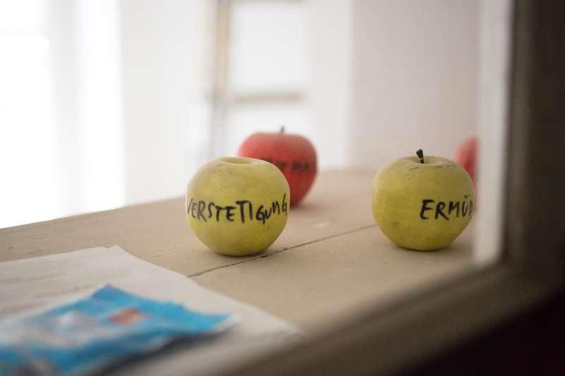Beschriftete Äpfel auf einem Fensterbrett der Galerie.