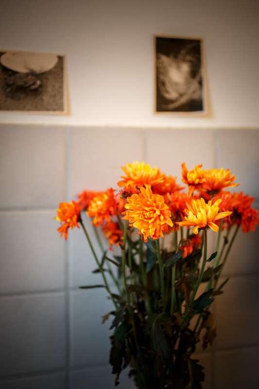 Ein Blumenstrauß in der Küche der Wohnung in Leipzig Lindenau.