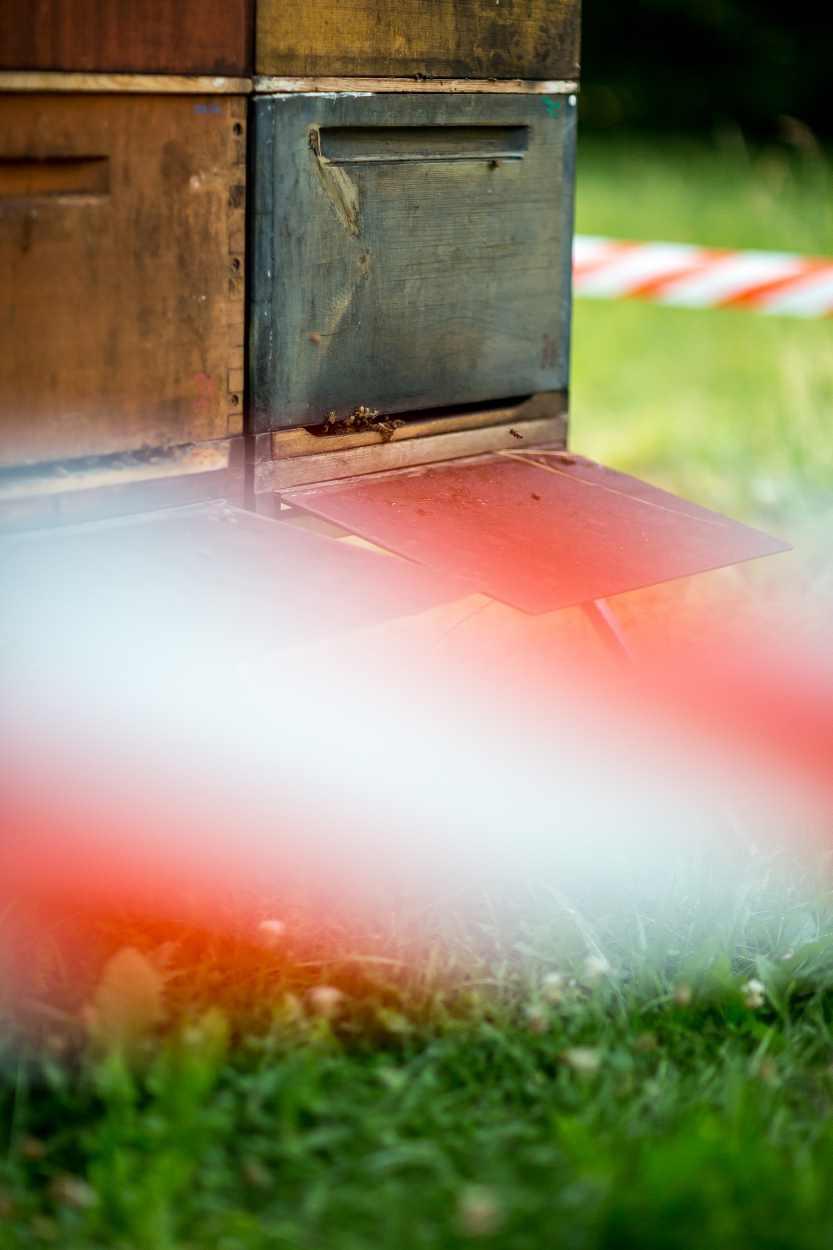 Ein Absperrband dient als Hinweis auf die Bienenstöcke.