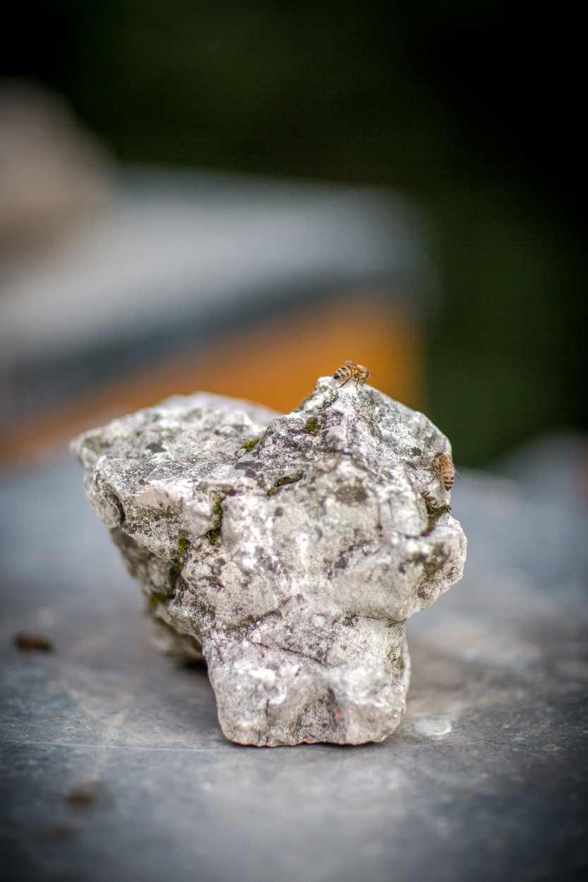 Detailaufnahme eines Stein zur Beschwerung des Bienenstocks.