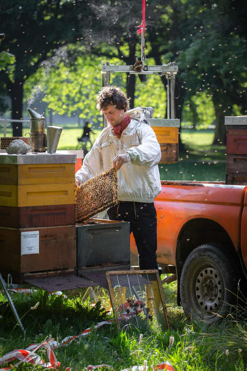 Christopher Mann bei seiner Arbeit als Imker im Clara-Zetkin-Park in Leipzig.