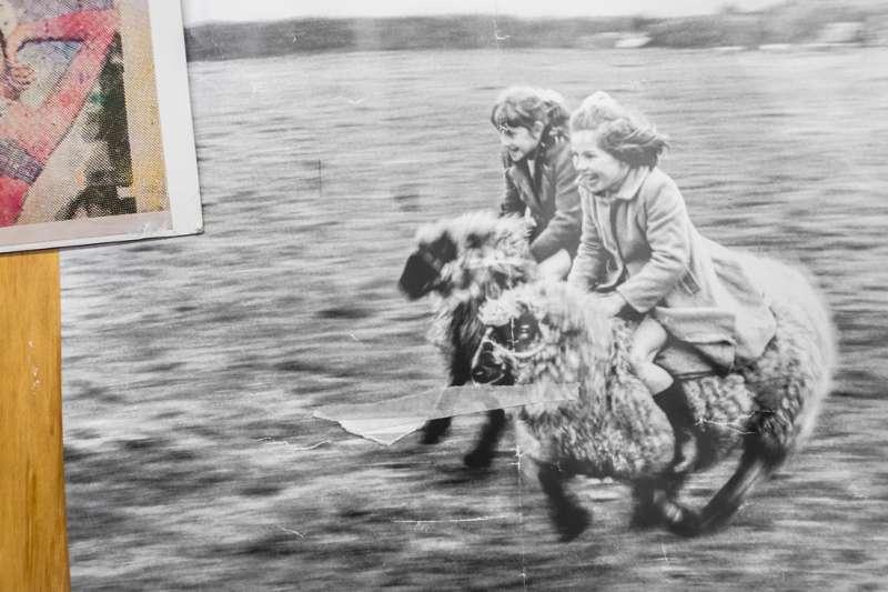 Ein altes Foto auf dem zwei Mädchen zu sehen sind, auf Schafen über eine Wiese reiten.
