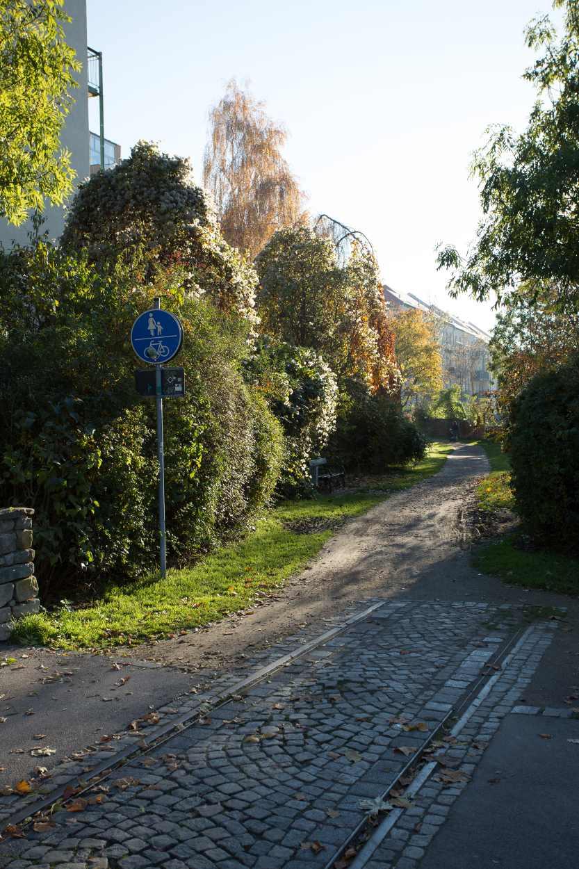 Übergang der ehemaligen Gleise in den neuen Rad- und Fußweg Richtung Henriettenpark.