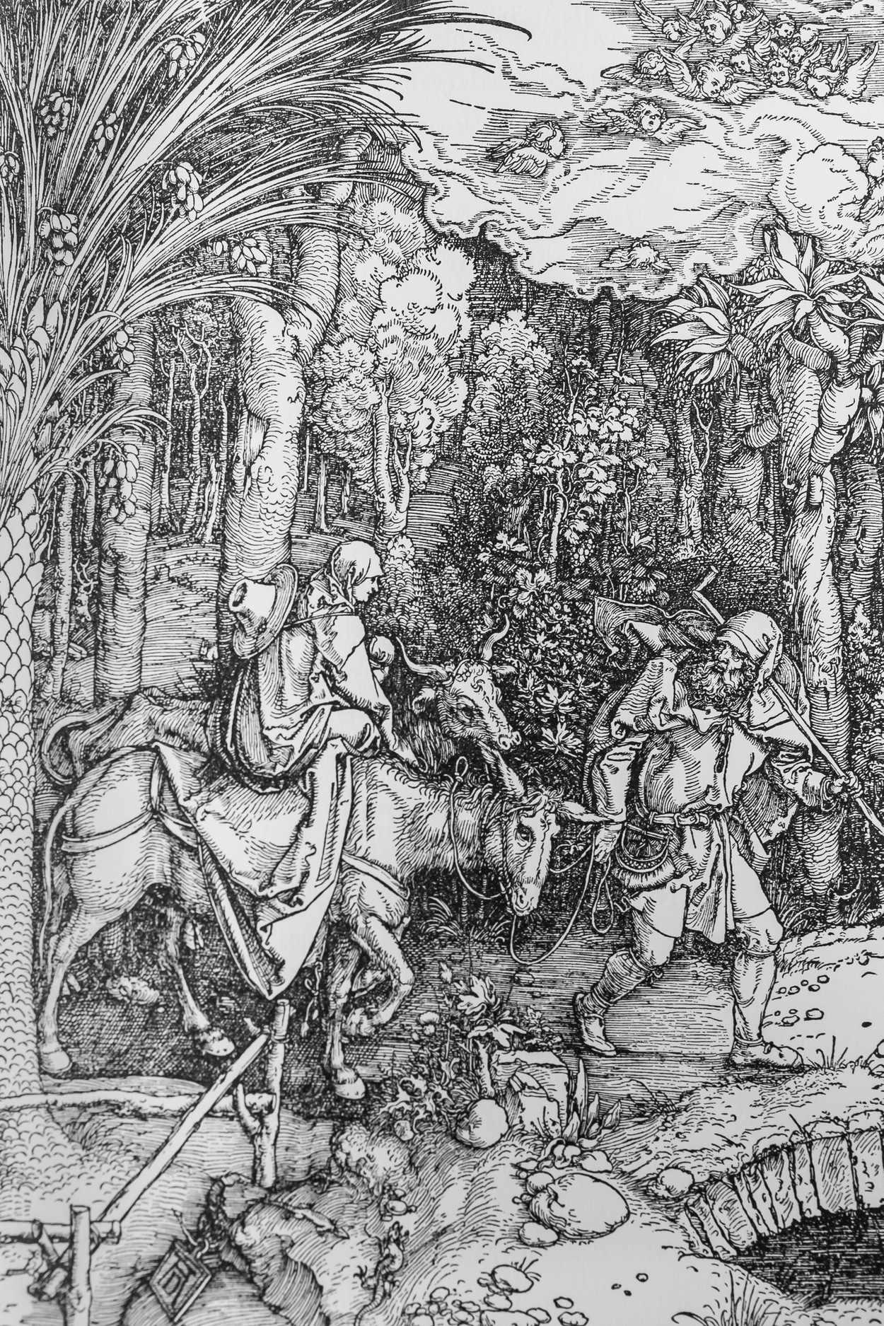 Die ursprünglich von Albrecht Dürer als Holzstich angelegten Vorlagen wurden als Klischees aufbereitet und dann nachgedruckt.