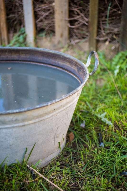 Eine Wanne dient zum Auffangen von Regenwasser.